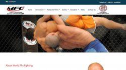 طراحی وب سایت ورزشی